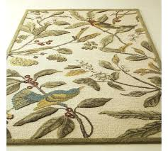 Area Rug Pottery Barn by Bird Area Rug Rugs Ideas