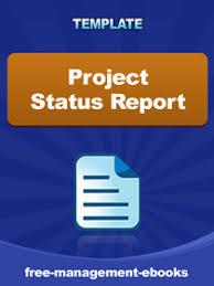 Daily Project Status Report Template Word Format     Project