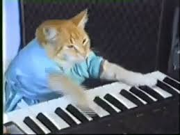 Piano Meme - play piano gifs search find make share gfycat gifs