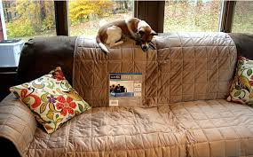 Dog Sofa Covers Waterproof How I Puppy Playdate Tested A Surefit Sofa Cover