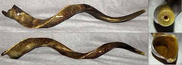 where to buy shofar shofar store buy top quality shofars expertly handcrafted