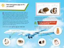 How Many Guinea Pigs Can Fit On A Plane Laura Overdeck Macmillan