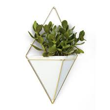 amazon com umbra trigg hanging planter vase u0026 geometric wall