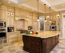 cabinet kitchen cabinets online fascinating kitchen cabinets