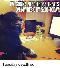 Spiderman Meme Desk - im gonna need those treats on desk by 530 today tuesday deadline