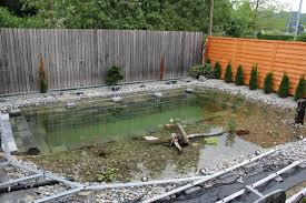 Pond In Backyard by 10 Different And Great Garden Project Anyone Can Make 1 Natural