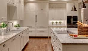 Kitchen Cabinet Photo Kitchen Cabinets On Houzz Tips From The Experts