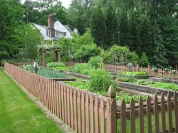 Cheap Fences For Backyard Cheap Fence Ideas To Embellish Your Garden And Your Home