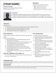 Credit Analyst Resume Sample by Treasury Analyst Resume Templates For Ms Word Resume Templates