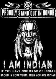 20 of my dna is of the apache tribe pride