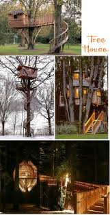 Treehouse Fostering Agency - bird house to tree house