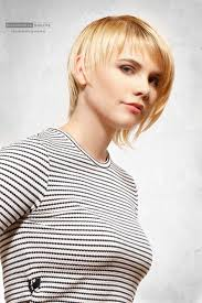 short hairstyles for fine hair hairiz