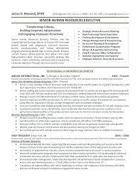 Sample Resumes For Hr Professionals 100 Sample Hr Resumes Hr Resume Format Hr Sample Resume Hr Cv