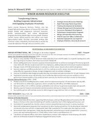 Shidduch Resume Template 100 Sample Hr Resumes Hr Resume Format Hr Sample Resume Hr Cv