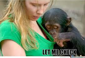 Chimp Meme - baby chimp checks stuff by ben meme center
