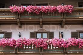 blumenk sten balkon blumenkästen für balkon blumenkasten f r balkon wundersch ne