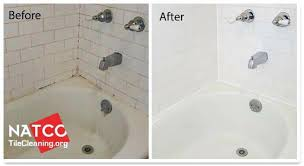 Bathtub Drain Cleaning Bathroom Tub Cleaner U2013 Seoandcompany Co