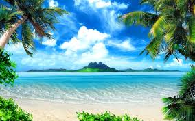 tropical beach http www marketplaceweddings com blog thinking of browse our large selection of peel and stick tropical beach wall murals for indoor or outdoor use in all sizes plus tips on mural installation