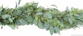 seeded eucalyptus fresh premium garland by pacific garland