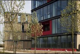 au bureau carre senart réalisation bambou bambou carré sénart