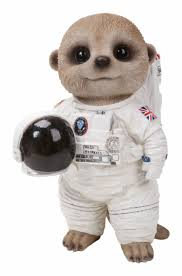 arts baby meerkat astronaut spaceman indoor outdoor