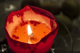Free Images Flower Petal Decoration Red Color Flame