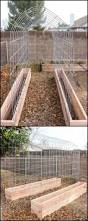 Raised Gardens You Can Make by Best 25 Raised Planter Boxes Ideas On Pinterest Garden Planter
