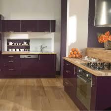 mur cuisine aubergine charmant cuisine couleur aubergine et peinture pour mur de cuisine