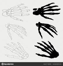 halloween skeleton silhouette human hand bones anatomy isolated vector illustration black and