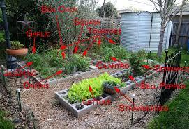 raised garden bed plans using concrete blocks the garden