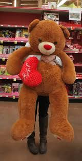 big bears for valentines day s day thoughts rocket reporter