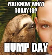 Hump Day Memes - most funny hump day meme