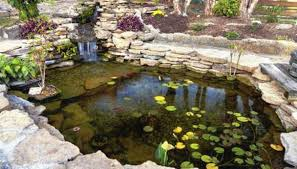 backyard waterfall pond ideas homesteady