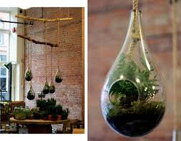 here u0027s how to make your own terrarium a self sustaining garden