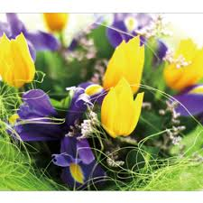 Wall Murals For Sale by Nature Yellow And Purple Tulips Photo Wallpaper Modern Wall Mural