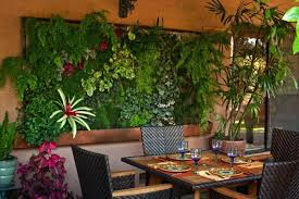 wall garden containers home design ideas and pictures