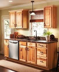 kitchen ideas unfinished wall cabinets 10 cheap with glass doors