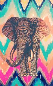best 25 elephant background ideas on pinterest cute elephant