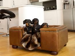 Luxury Dog Beds  Designer Dog Sofas As Seen On The Apprentice - Luxury sofa beds uk