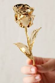Rose Dipped In Gold Best 25 Golden Roses Ideas On Pinterest Teacup Tea Cups And