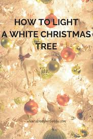 how to light a white tree self reliant living