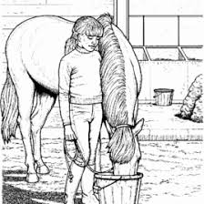 riding horse coloring pages cooloring coloring pages