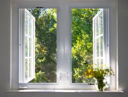 window indoors house home interior flower inside of tree leaf