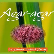 qu est ce que l agar agar en cuisine agar agar agar agar poudre en gelules minceur algue bio