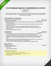 resume sle with career summary customer service skills section on the hunt pinterest resume