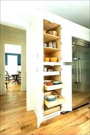 shallow storage cabinet with doors shallow depth storage cabinets gamenara77 com