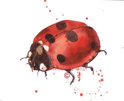102 best ladybug love inspiration images on pinterest ladybug