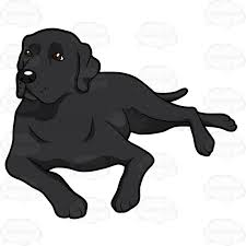 black lab clipart collection