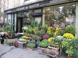 flower shops in 78 best flower shops around the world images on