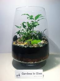 51 best terrariums by gardens in glass images on pinterest